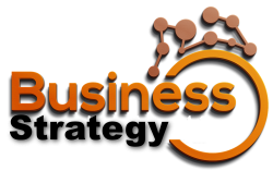 Business Strategy NZ logo